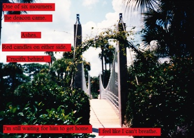 Fancy bridge at a Florida resort