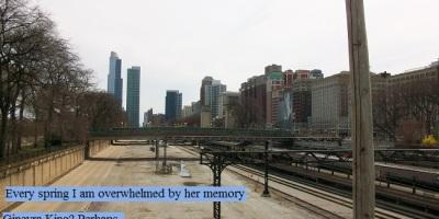 Downtown Chicago train yard