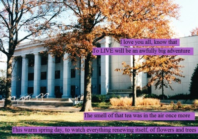 Renewal on the campus of American University