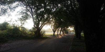 Walking in Orlando at 7am