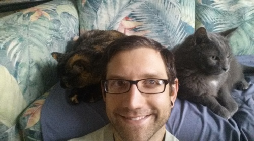 Cat reunion