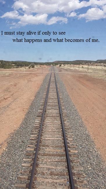 Train tracks recede into the past