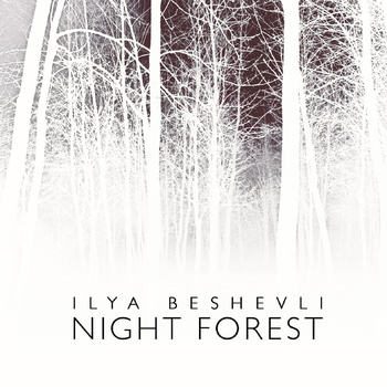 Cover of Ilya Beshevli's album Night Forest