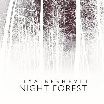 Cover of Ilya Beshevli's album Night Forest