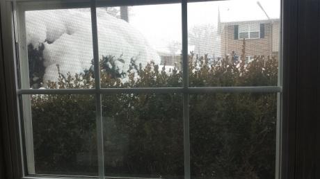 A snowy morning in huntsville, AL