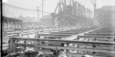 Chicago Stockyards