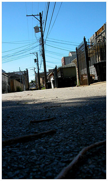 Chicago_Alley,_August_2006
