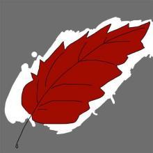 Scarlet Leaf Review Logo